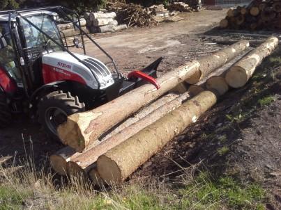lesní traktor STEYR nabírá kládu