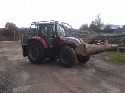 červený traktor STEYR veze kládu