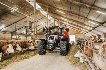 steyr multi v kravíně
